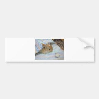 loving rabbits bumper sticker