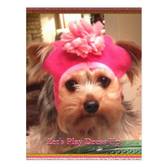 Loving Yorkies in Hats Postcard