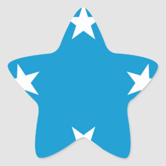 Low Cost! Federated States of Micronesia Flag Star Sticker