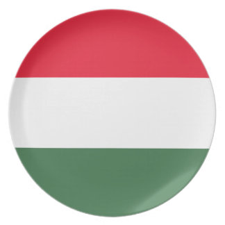 Low Cost! Hungary Flag Plate