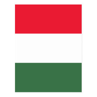 Low Cost! Hungary Flag Postcard