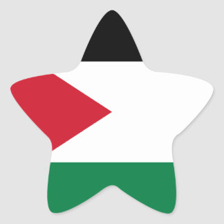 Low Cost! Jordan Flag Star Sticker
