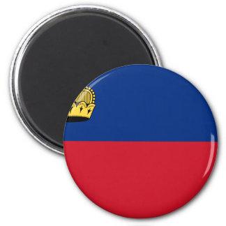 Low Cost! Liechtenstein Flag Magnet