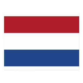 Low Cost! Netherlands Flag Postcard
