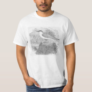 Low Cost Tern On A Cliff T Shirt