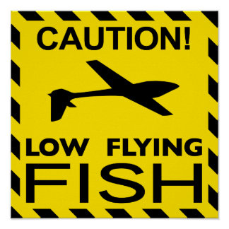 """""""Low Flying Fish"""" Poster"""