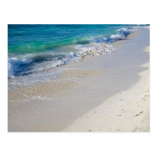 Low Tide Postcard