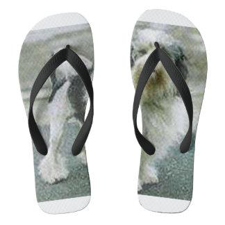 lowchen full 3 flip flops