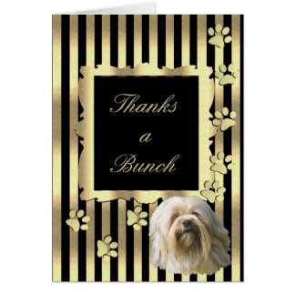 Lowchen on Black and Gold with Pawprints Card