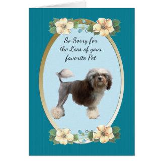Lowchen, Sympathy or Pet Loss Card