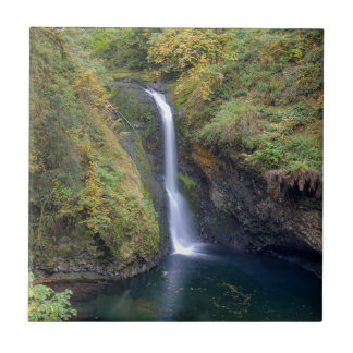 Lower Butte Creek Falls Plunging into a Pool Tile
