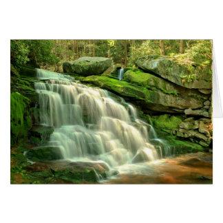 Lower Elakala Falls Card