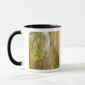 Lower Emerald Pool Waterfall Red rock and Tree Mug
