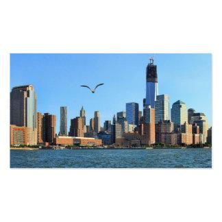 Lower Manhattan Skyline: WTC, Woolworth Business Card