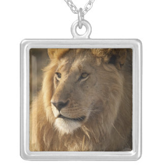 Lower Mara in the Masai Mara Game Reserve, Silver Plated Necklace