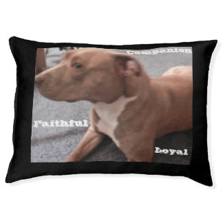 LOYAL PIT BULL dog bed Large Dog Bed