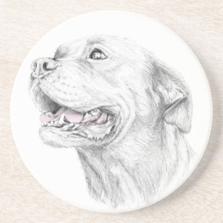 Loyalty, An American Staffordshire Terrier Beverage Coaster