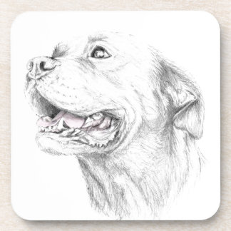 Loyalty, An American Staffordshire Terrier Beverage Coasters