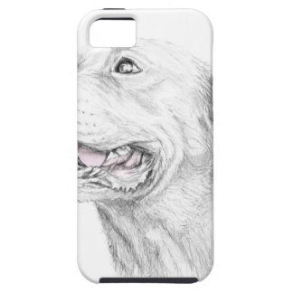 Loyalty, An American Staffordshire Terrier iPhone 5 Case