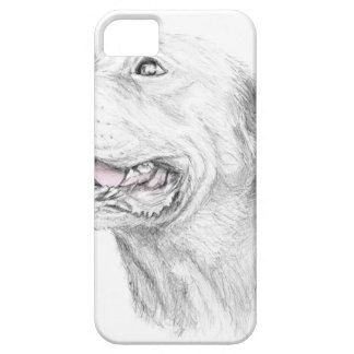 Loyalty, An American Staffordshire Terrier iPhone 5 Cover