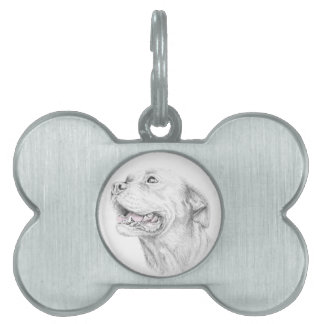 Loyalty, An American Staffordshire Terrier Pet ID Tag