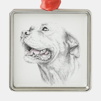 Loyalty, An American Staffordshire Terrier Silver-Colored Square Ornament