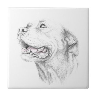 Loyalty, An American Staffordshire Terrier Tile