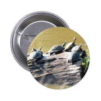 LSU Turtles.JPG 2 Inch Round Button