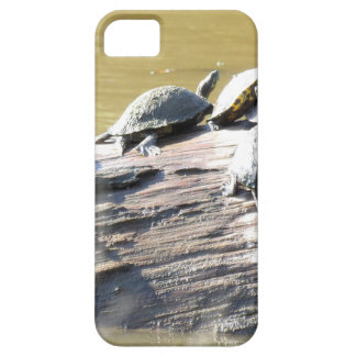 LSU Turtles.JPG Case For The iPhone 5