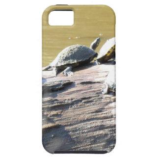 LSU Turtles.JPG iPhone 5 Cover