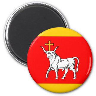 Ltu Kaunas, Liechtenstein flag Magnet