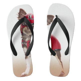 Lucha libre dog ,funny chihuahua,chihuahua flip flops