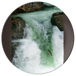 Lucia Falls Jump Plate