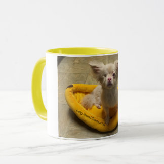 Lucky Banana Bed Coffee Mug