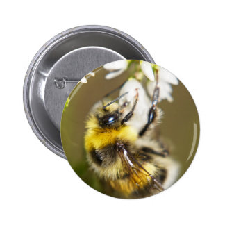 Lucky Bee 2 Inch Round Button