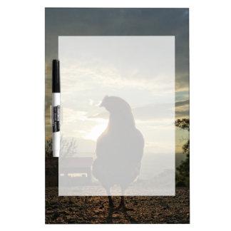Lucky chicken 01.3 dry erase board