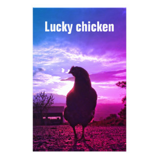Lucky chicken 01.3TF Stationery
