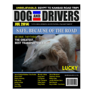 Lucky - Dog and Driver Poster