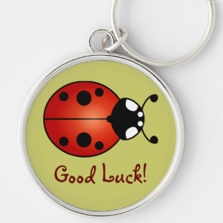Lucky Ladybug Red Orange Black Ladybird Good Luck Silver-Colored Round Keychain