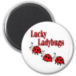 Lucky Little Ladybugs Refrigerator Magnets