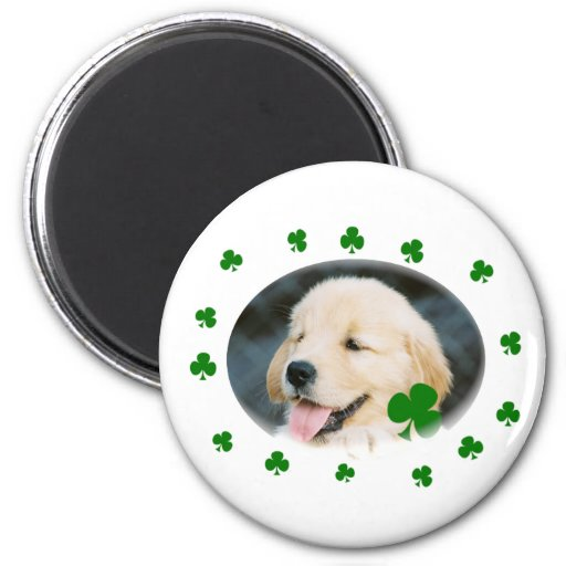 Lucky Puppy St. Patrick's Day Cards, Shirts & Gifs Magnet