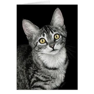 """""""Lucky Star"""" Tabby Kitten Card"""