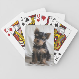 Lucky The Japanese Yorkie playing cards
