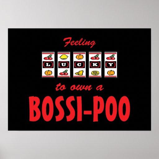 Lucky to Own a Bossi-Poo Fun Dog Design Print