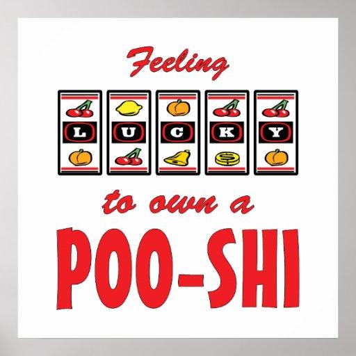 Lucky to Own a Poo-Shi Fun Dog Design Poster