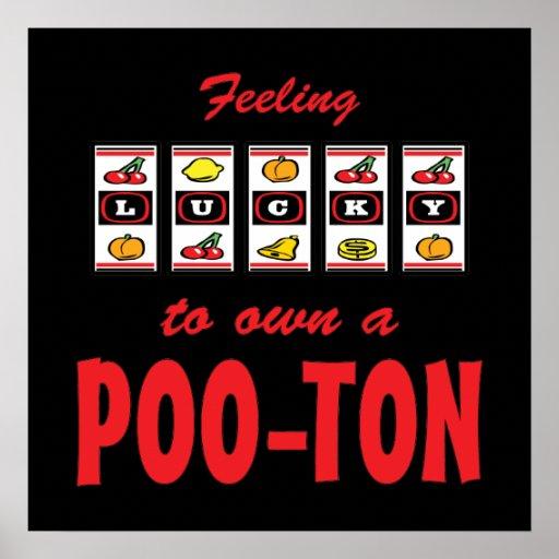Lucky to Own a Poo-Ton Fun Dog Design Print