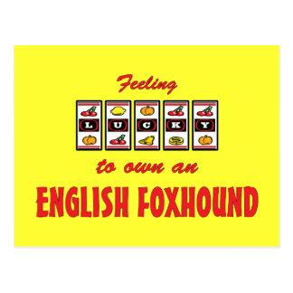 Lucky to Own an English Foxhound Fun Dog Design Postcard