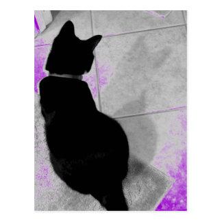 Lucy's Shadow B+W Postcard