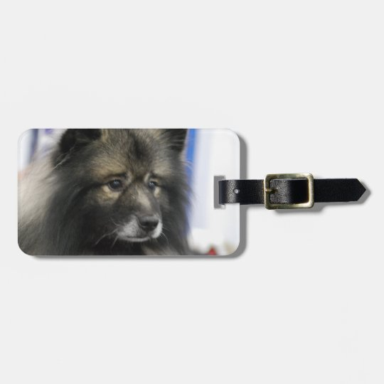 Luggage Tag - Customized