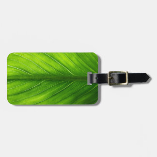Luggage Tag--Leaf Luggage Tag